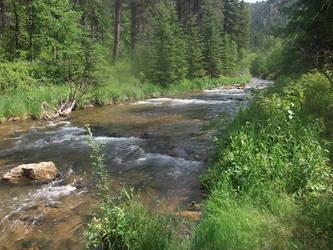 Black Hills River by BlueMoonShadows