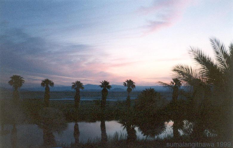 Desert Dawn by sumalangitnawa