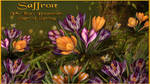 Saffron For Lisa's Botanicals Signs of Spring by NapalmArsenal