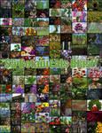 Botanical Blast SALE!! by NapalmArsenal