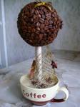 Coffee tree 3