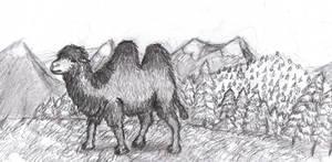 Prehistoric Russia: Steppe camel