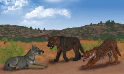 Chunky pseudo-wolves