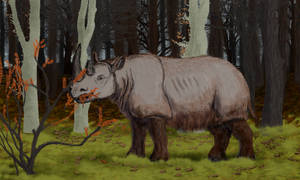 Day 2: Favourite prehistoric perissodactyl