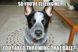 You faked It! by KrazyKatieKandyKat