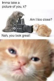 Am I Too Close? by KrazyKatieKandyKat