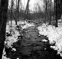 The Little Black River