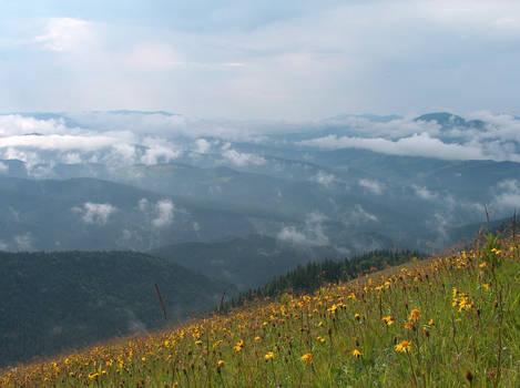 Ukraina - gdzies w gorach