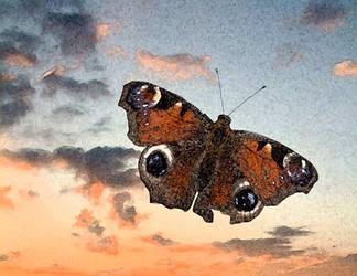 Butterfly by beaart