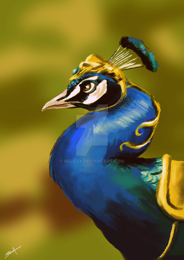 Peacock2 by Melevy