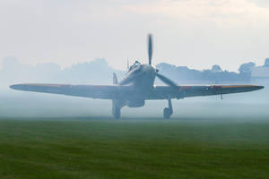 Hurricane in the mist by Daniel-Wales-Images