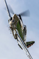 Curtiss P-40C Tomahawk by Daniel-Wales-Images