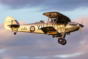Hawker Hind I by Daniel-Wales-Images