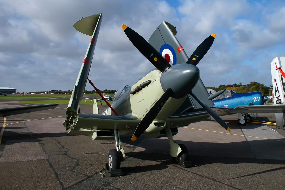 Supermarine Seafire F.XVII by Daniel-Wales-Images