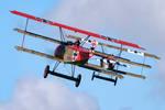 Fokker DR.I Pair