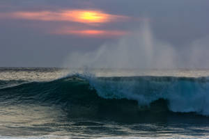 Surf's Up by Daniel-Wales-Images