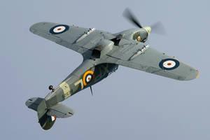Hawker Hurricane Mk.IIb by Daniel-Wales-Images