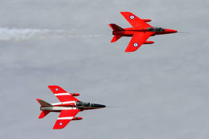 Folland Gnat T.1 Pair by Daniel-Wales-Images