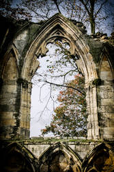 St Mary's Abbey by Daniel-Wales-Images
