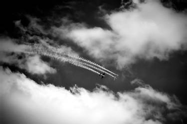 Dancing the skies on laughter-silvered wings by Daniel-Wales-Images