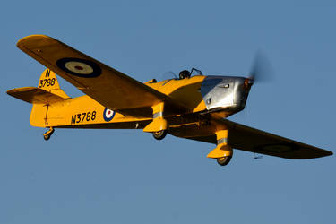 Miles M.14a Magister by Daniel-Wales-Images
