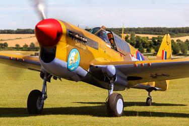 Curtiss P-40F Warhawk by Daniel-Wales-Images
