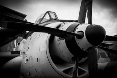 Fairey Gannet by Daniel-Wales-Images