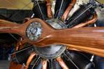 le Rhone 9C (Bristol Scout) by Daniel-Wales-Images