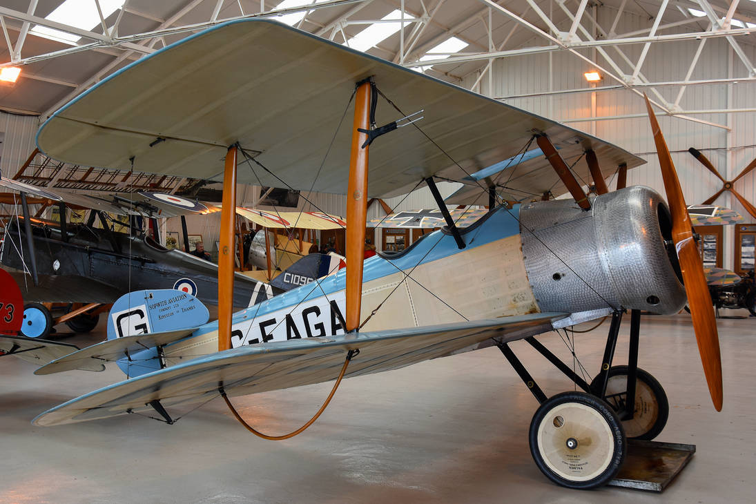 Sopwith Dove by Daniel-Wales-Images