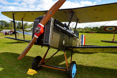 Royal Aircraft Factory S.E.5a (Reproduction) by Daniel-Wales-Images