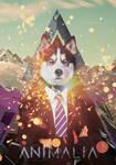 Animalia - Wolf