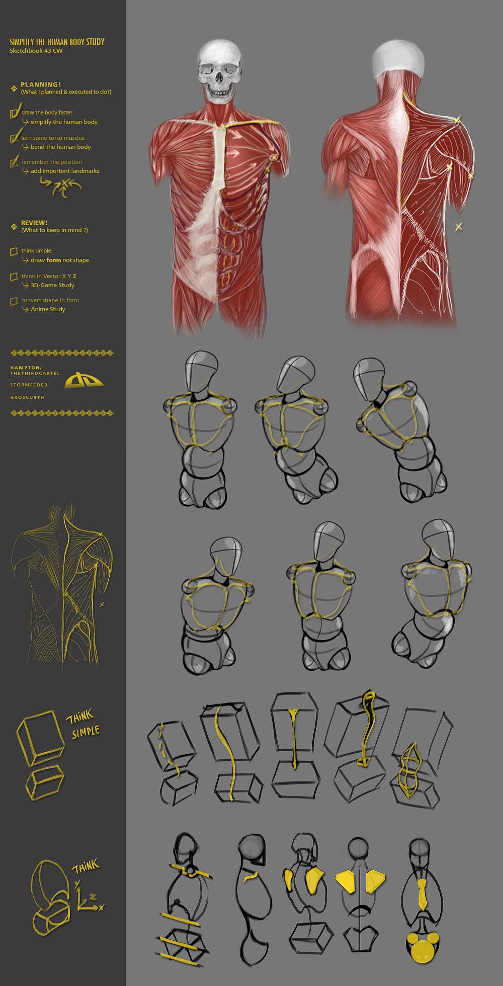 Simplify human body study 43CW by JustIRaziel