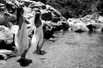 Natal Waters