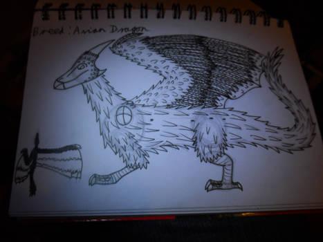 Avian Dragon