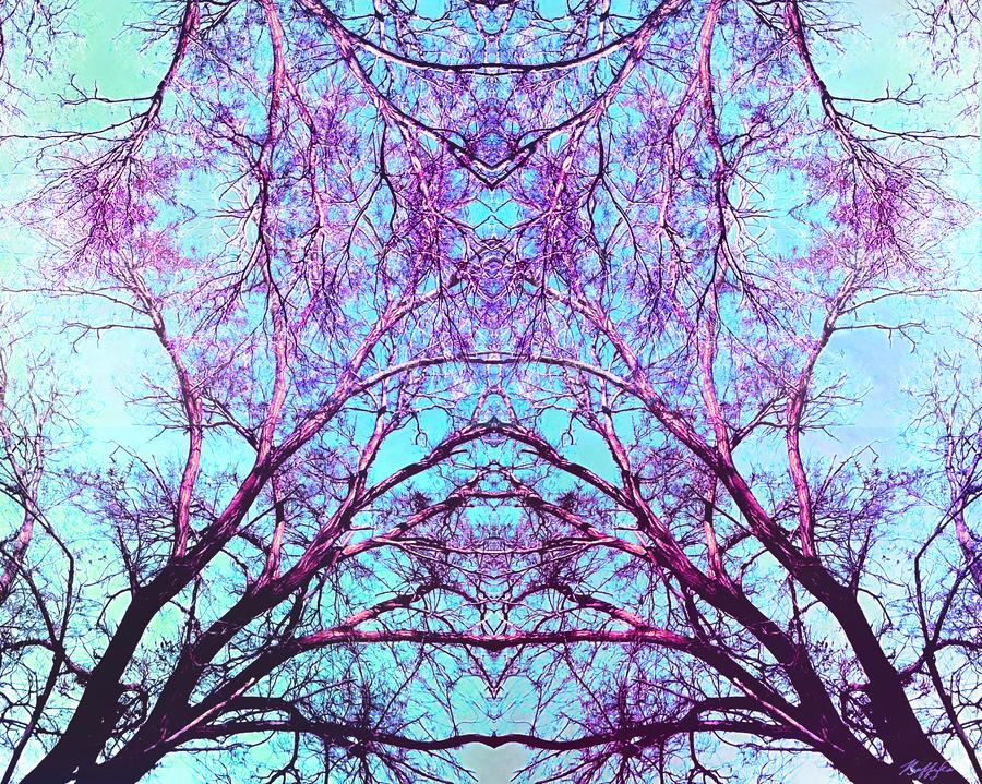 Asymmetrical Symmetry By Raffyka On Deviantart