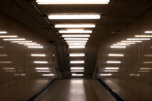 Fluorescent lamps artistic by winampers-pro