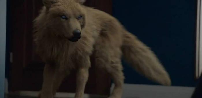 female werewolf from the syfy series bitten