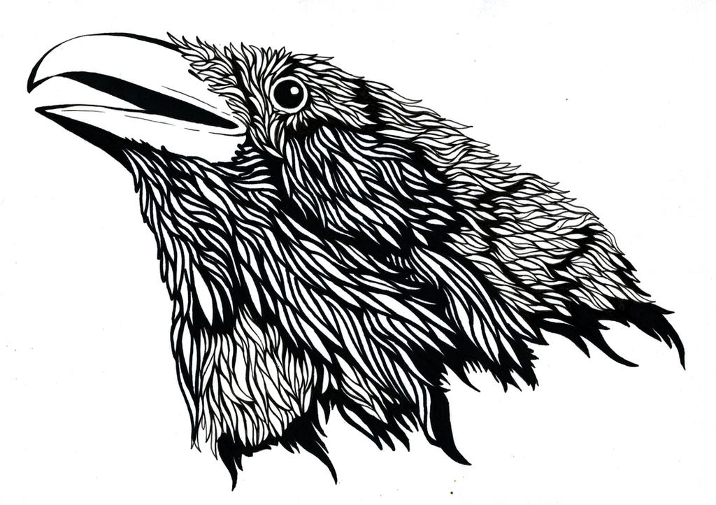 raven by FeatheredDiva