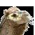 Camelia Disphere by aeliaplz