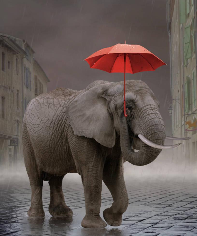 Rainy Mood by Lora-Vysotskaya