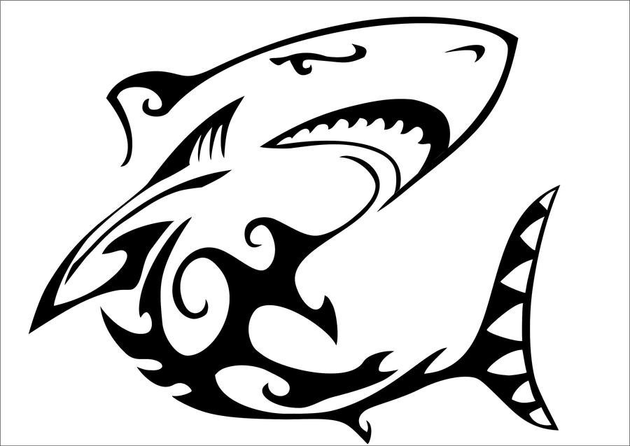 It's just a picture of Peaceful Shark Tattoo Drawing