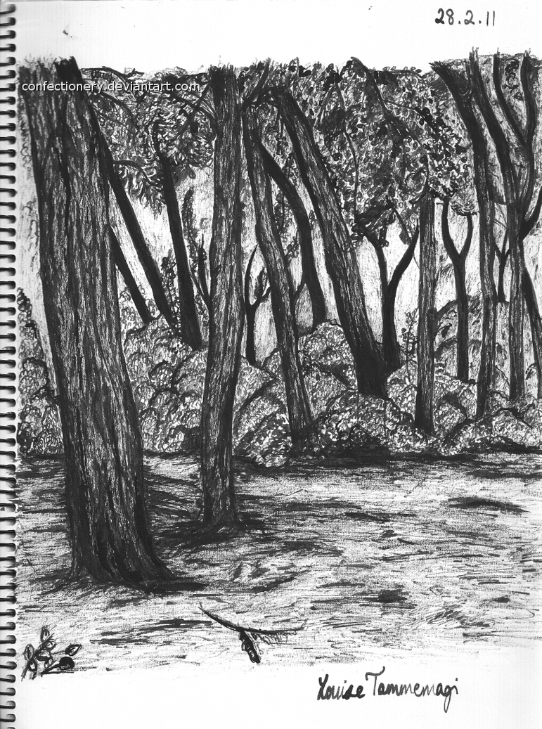 Uncategorized Forest Drawing forest ink drawing by confectionery on deviantart confectionery