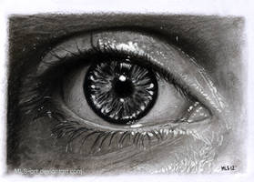 Eye Drawing 15 by MLS-art