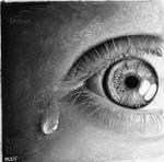 Reflections - missHaslerka