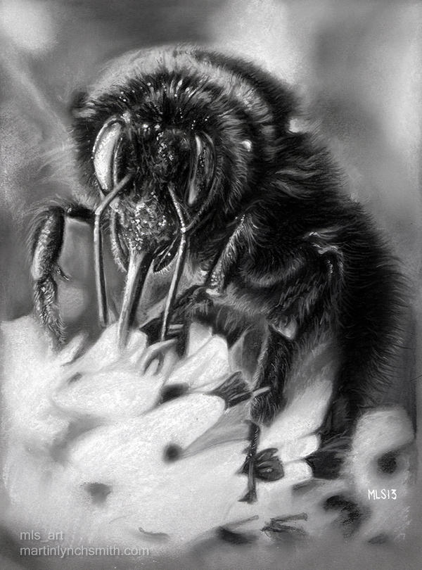 Bumble by MLS-art