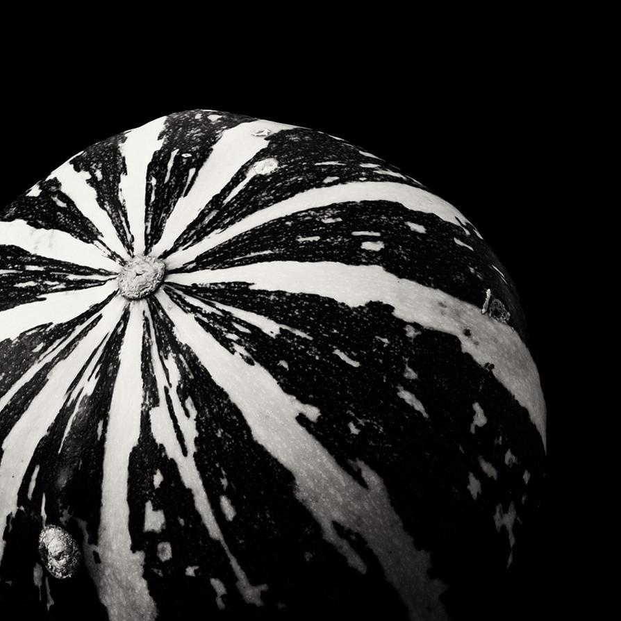 pumpkin III by miclart
