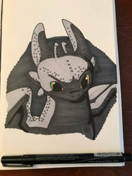 Toothless  by FGHStudio