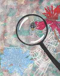 Tales From Mema's Garden: Spiders (Magnifying)