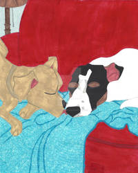 Daisy Comes Home: Puppy Love, A Kiss Goodnight