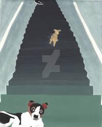 Duke and Daisy Stairs